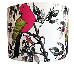 lampshade - drum - kingparrot
