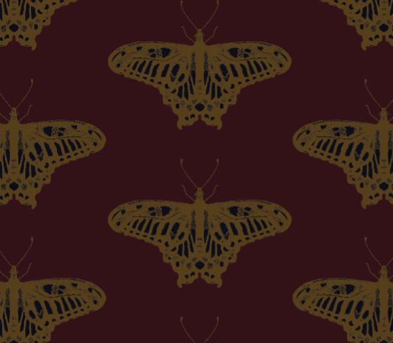 butterflycolour2
