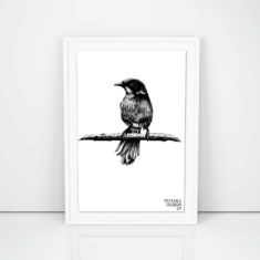 Giclée art print with helmeted honeyeater illustration printed on on 300gsm cotton rag with archival pigment inks