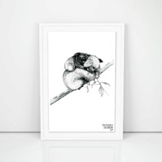 Giclée art print with Koala illustration printed on on 300gsm cotton rag with archival pigment inks