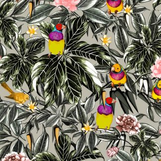 So Finchy (Gouldian Finch)design available as a print for wallpaper, upholstery fabric, linen and our commercial fabric range.