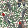 Gang Gang Cockatoo design available as a print for wallpaper, upholstery fabric, linen and our commercial fabric range.