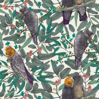 Gang Gang Cockatoo design available as a print on wallpaper, upholstery fabric, linen and our commercial fabric range.